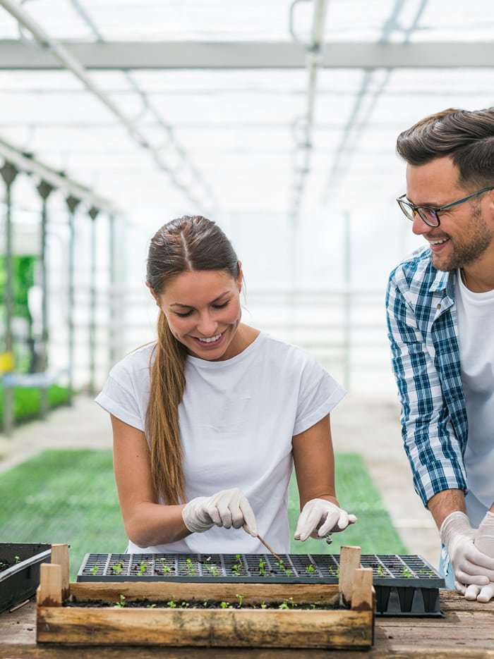 Organic farmers planting seeds in a greenhouse
